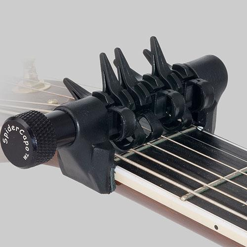 SPIDERCAPO standard model